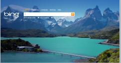 Bing_2009
